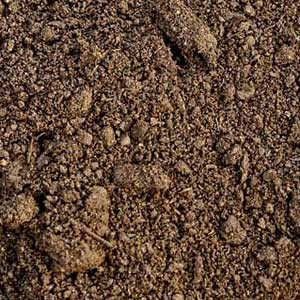 10 Kolay Toprak Testi