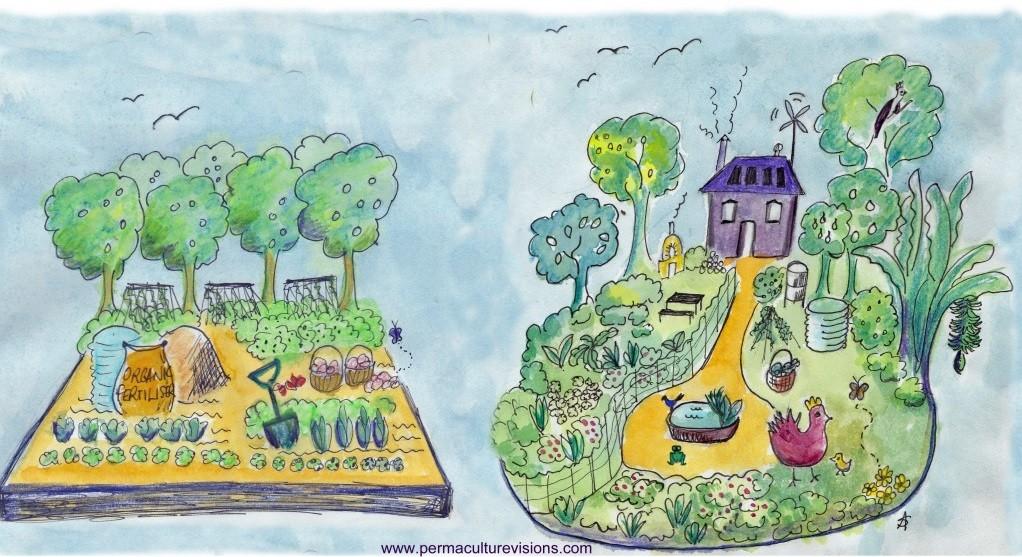 Organik bahçecilik ve permakültür arasındaki farklar