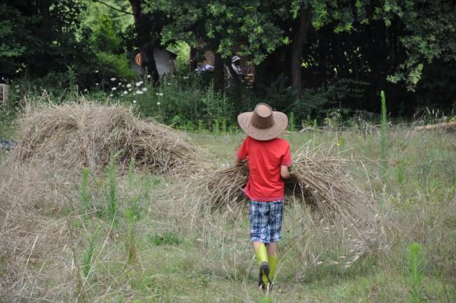 Aman da ne zor imiş yar yar buğday hasadı..